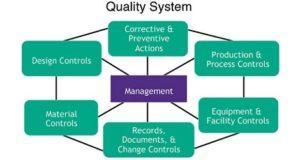 Quality Improvement Project elements