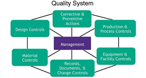Quality Improvement Project elements